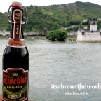 Romantic Rhine and the Most Surreal Beer Festival Ever