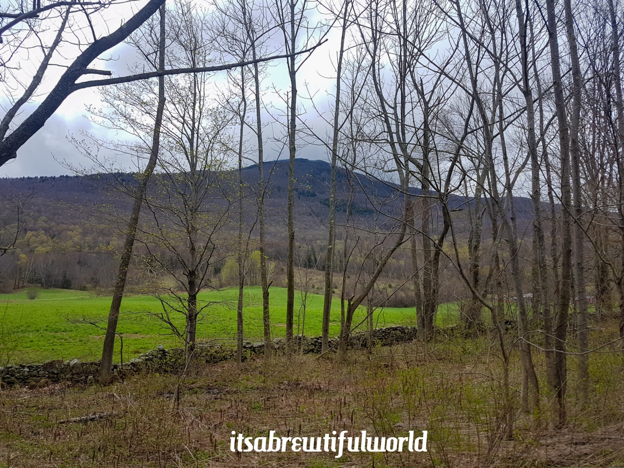 Hike the Brewtifulworld: Mount Greylock