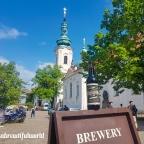 Brewtiful Prague, Part 2
