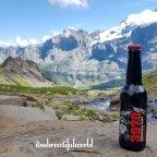 First – Hiendertellti -Wildgärst – Grosse Scheidegg