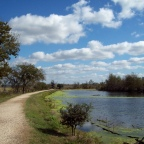 Before Life Was Brewtiful:  Brazos Bend State Park, Texas